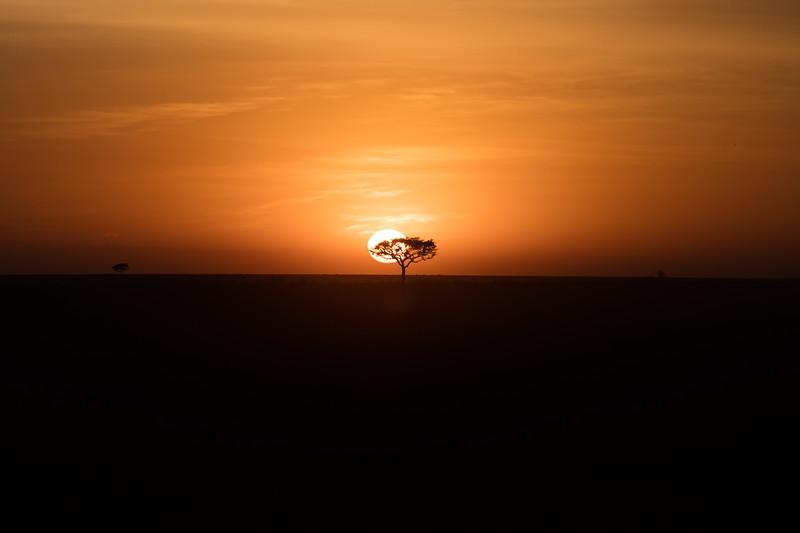 Africa - 101616 - 3708.jpg