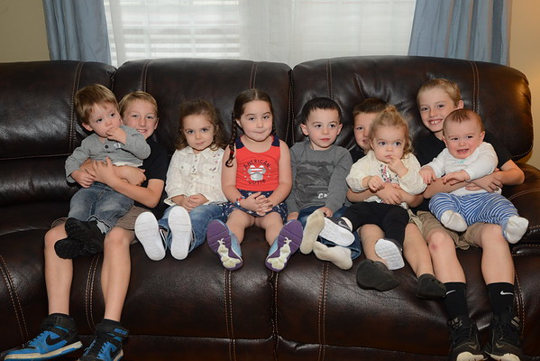 Armbruster-Stucke Family 2017