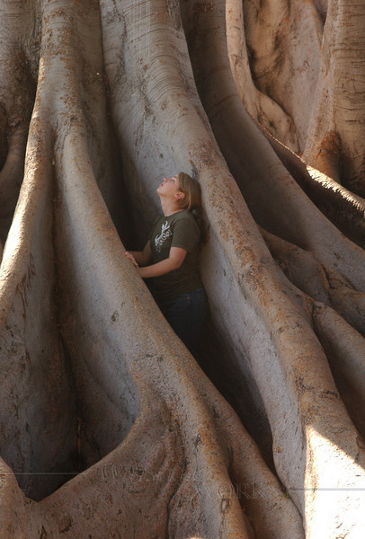 Lydia in the roots of Moreton Bay fig tree in ravine - Balboa Park, CA