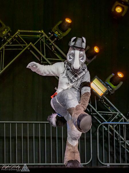 MFF 2018 Dance Comp-2099.jpg
