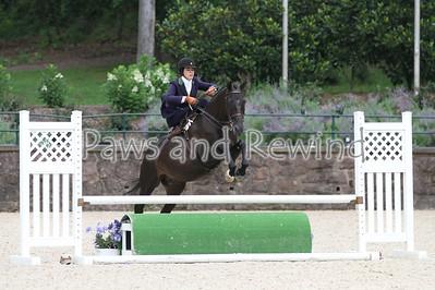 Ladies Hunter Side Saddle Over Fences (Sunday)