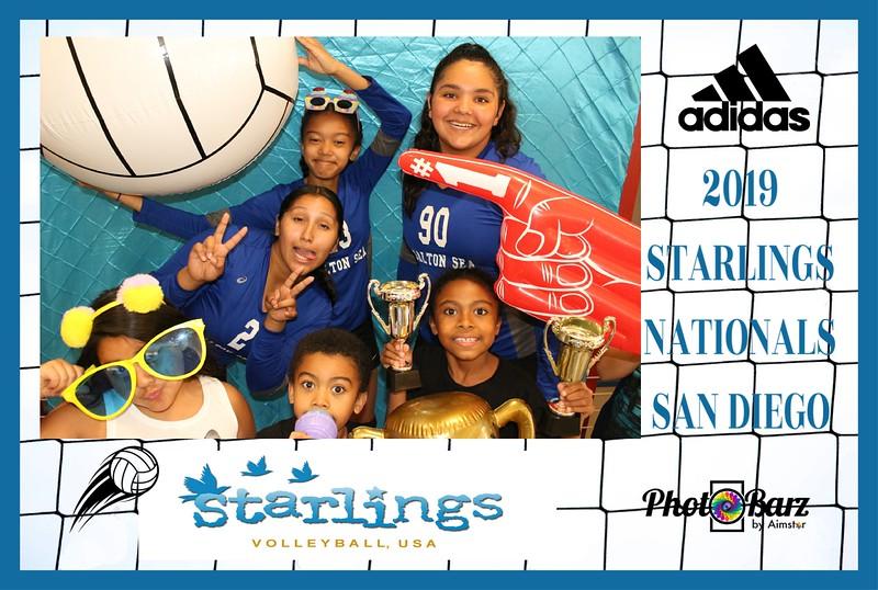 Starlings Volleyball (33).jpg