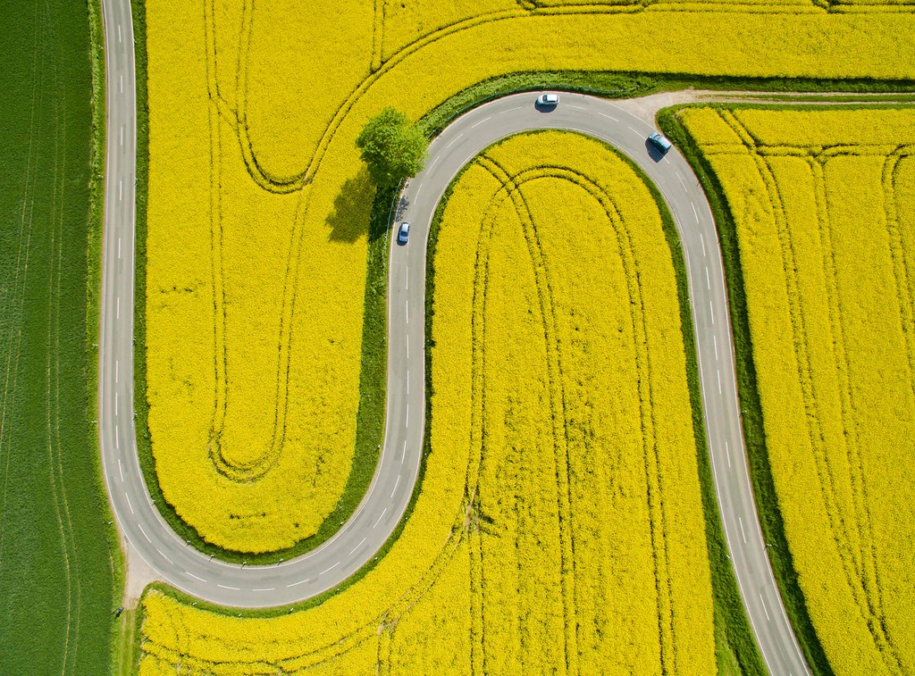 . Aerial view taken on May 12, 2016 shows cars driving on the winding L401 country road past rapeseed fields near Nienstedt close to Bad Muender am Deister, central Germany. / AFP PHOTO / dpa / Julian Stratenschulte /AFP/Getty Images