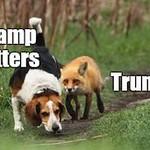 Trump - POTUS 1