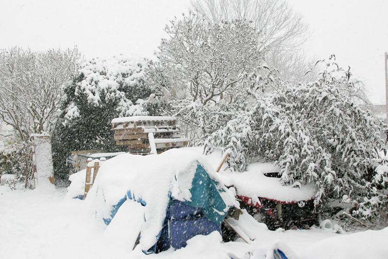 Snow 2010 092.jpg