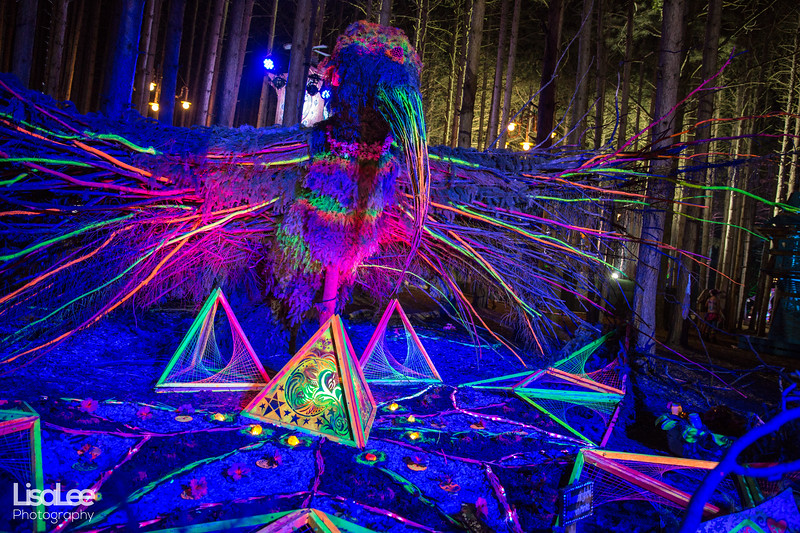 2018-06-30_ElectricForest_27.jpg
