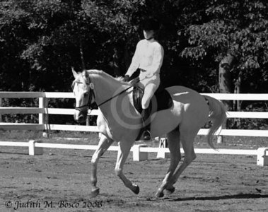 Red Horse Stables Schooling Dressage 9-16-06