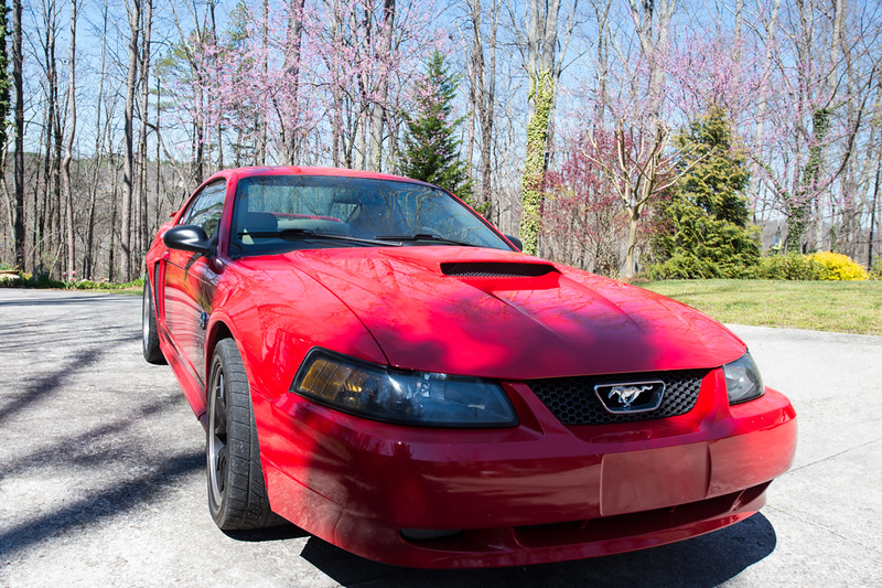 Brandons 2004  Mustang for sale-4.jpg