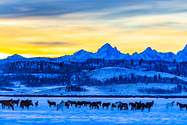 Ranch Near Grand Teton National Park, Wyoming at Sunset During Winter