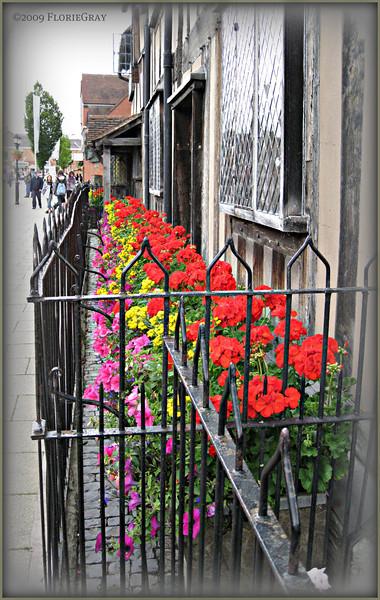 Shakespeare's Sidewalk; Stratford  ©2009 FlorieGray