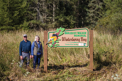 Winterberry Bog