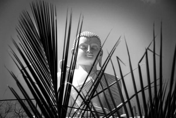 Sri   Lanka  expo  noir et blanc