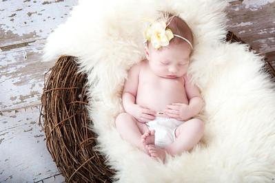 2011 Kennedy | 2 weeks old