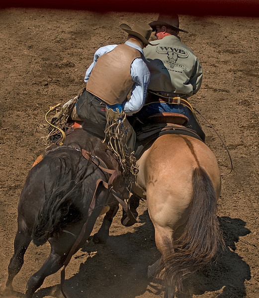 COOMBS RODEO-2009-3601A.jpg