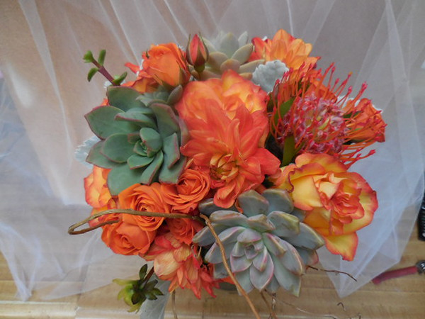 Succulents, orange roses, pincushion $150