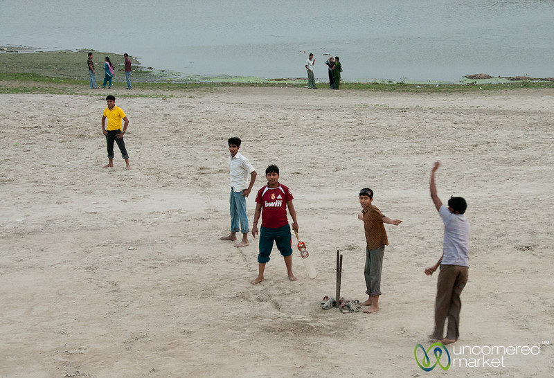 Cricket Along the Ganges (Padma) - Rajshahi, Bangladesh