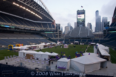 March for Babies at Qwest Field