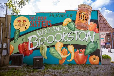 Brookston, Indiana