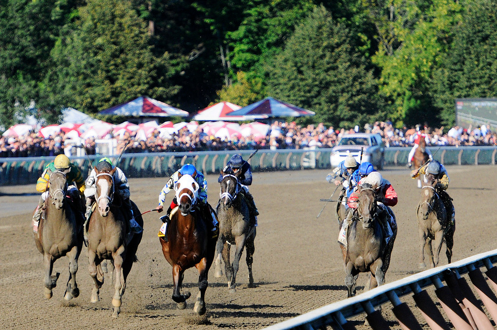 . With a photo finish, Will Take Charge trained by D. Wayne Lucas ridden by Luis Saez won the million dollar Travers Stakes this Saturday afternoon at the Saratoga Race Course.Photo Erica Miller/The Saratogian 8/24/13 TraversEM2