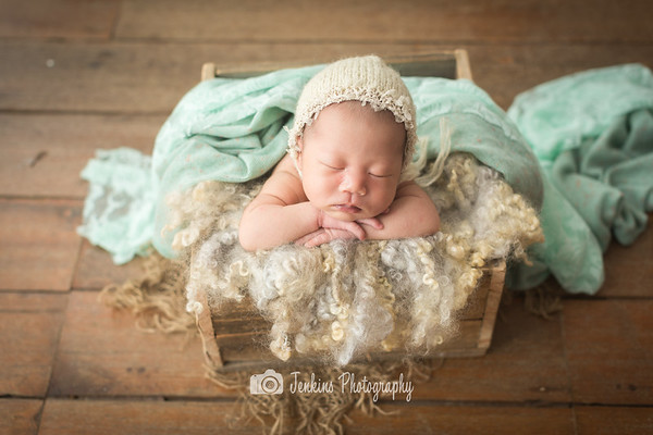 2017-09-08 Introduction to Newborn Photography