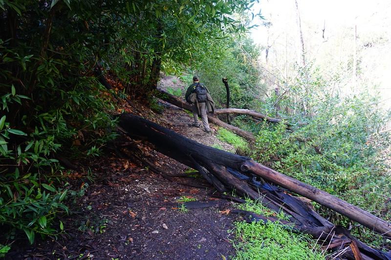 20160218064-Gabrielino Trail Scouting.JPG