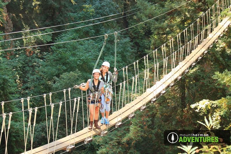 redwood_bridge_1473461641278.jpg