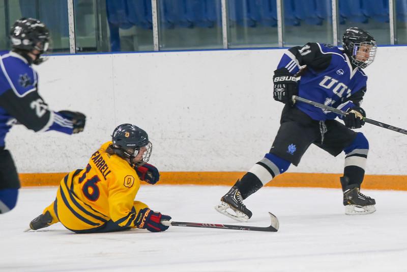 20150129 QWHockeyatUOIT 1026.JPG