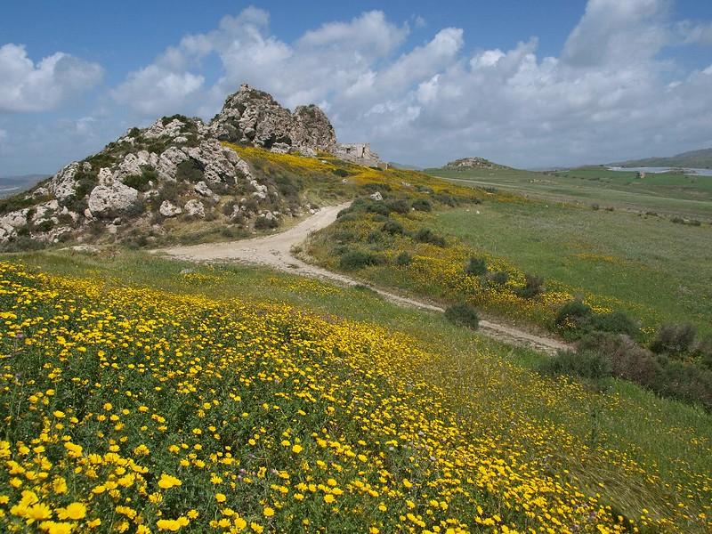 Punta Bianca Palma di M. 14-04-12 (31).jpg