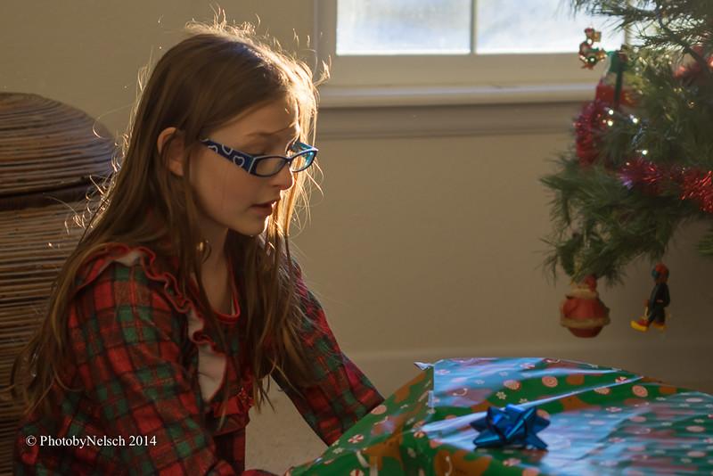 Christmas 2014-196.jpg