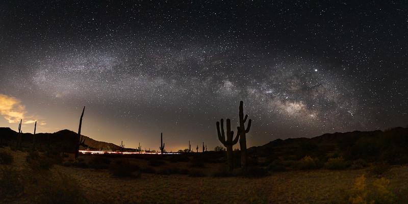 Milky Saguaro Cacti