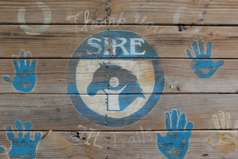 SIRERide-a-thon2012-8999.jpg