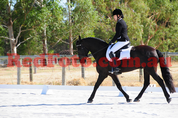 2014 03 09 Transitions Unofficial Dressage Sand Arenas