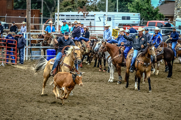 Doyle W. Hoskins Memorial Roping