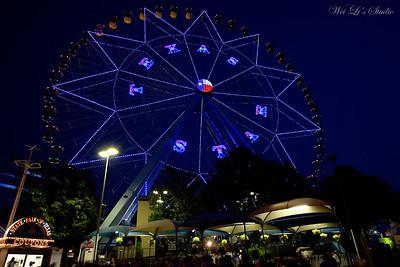 2008 Texas State Fair