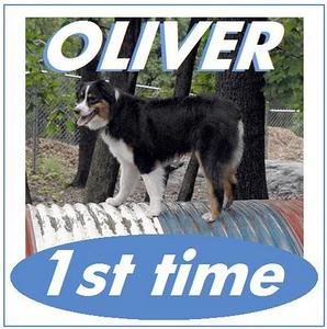 OLIVER 1st tube jump