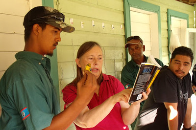 Belize Bird Banding 2010