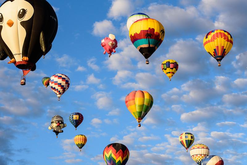 SpecialShapeRodeo_ABQ_BalloonFiesta-4.jpg