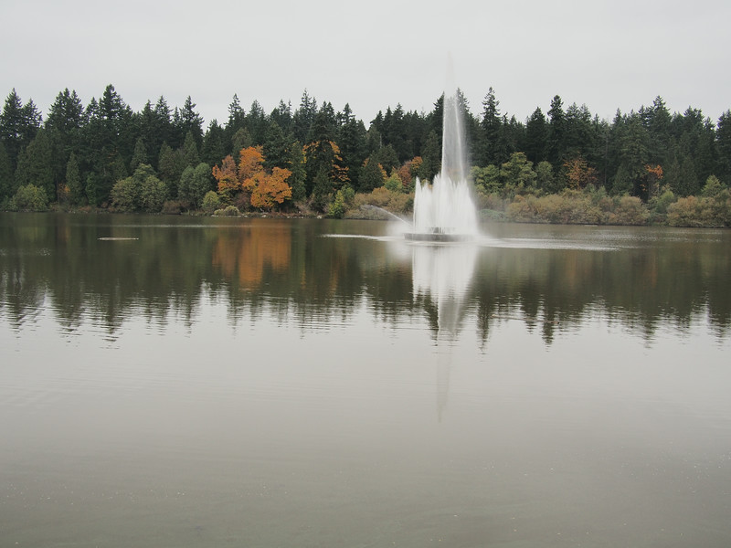 "Oct. 20/13 - ""The Lost Lagoon"", outside of Stanley Park"