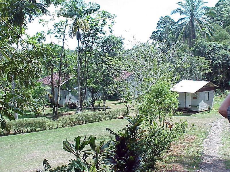 Las Cusingos Skutch farm Costa Rica 2-16-03 (50898171)