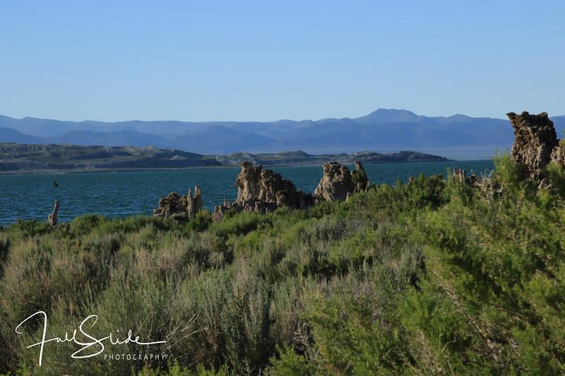 Mono Lake-8.jpg