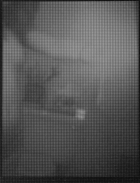 Self_44_2009-2211306410-O.jpg