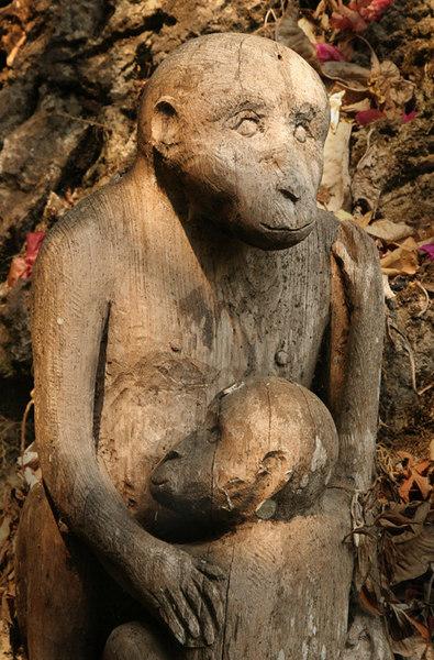 monkeysmall.jpg