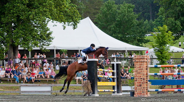 TR&HC Charity Horse Show 2012