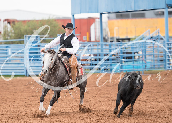 Big Pasture Ranch Horse Competition