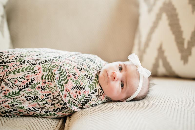 BabyMorrill-4.jpg