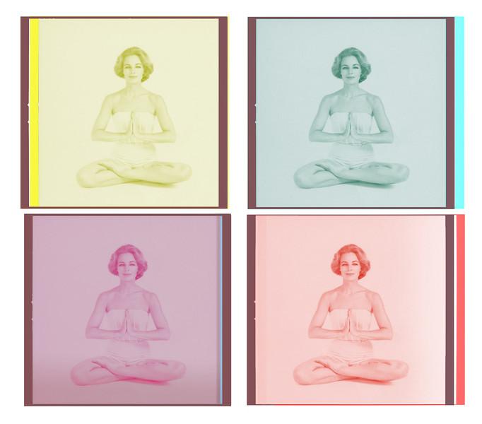 Lotus-best_2.jpg
