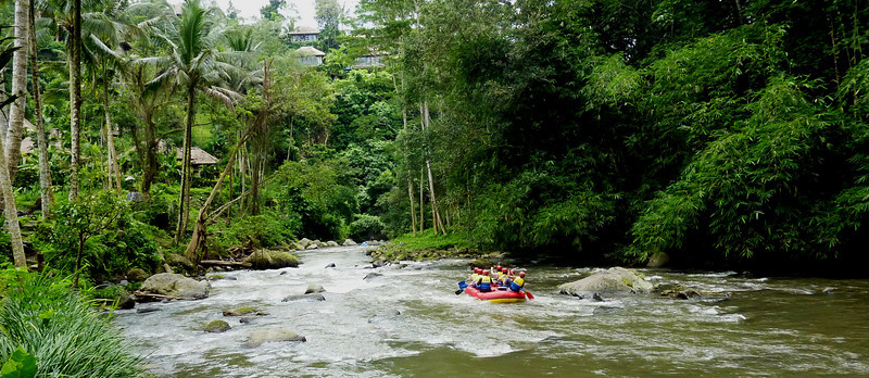 descent of the Ayong River, near Ubud