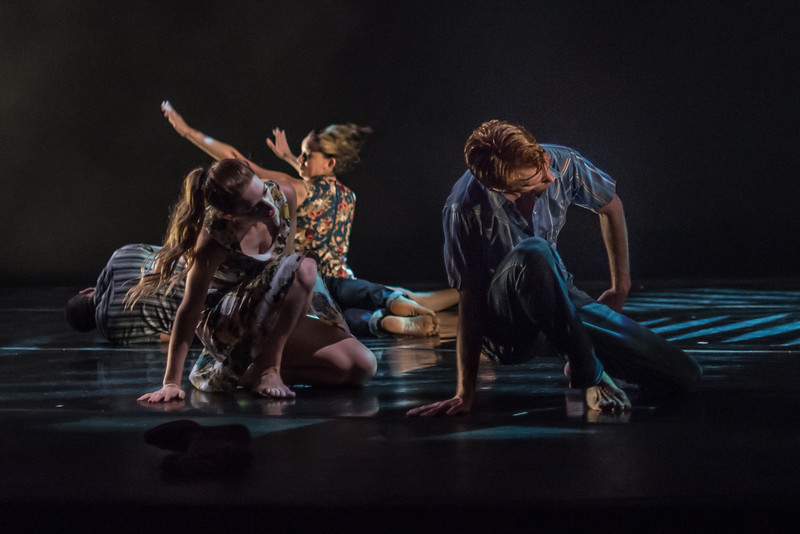 170714 New Dances 2017 (Photo by Johnny Nevin)_2636.jpg