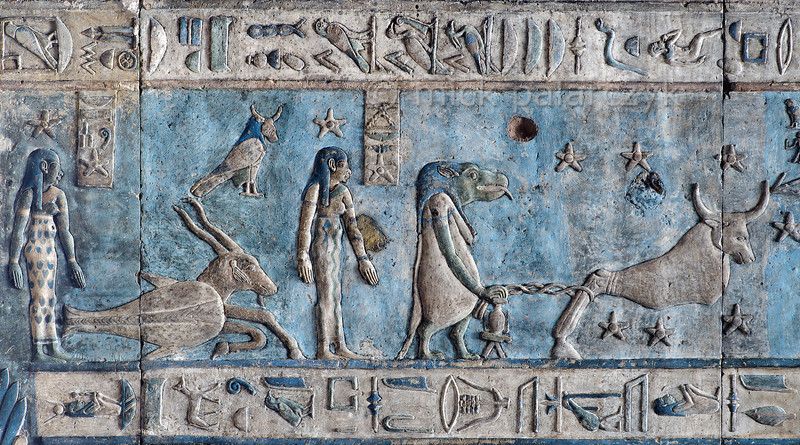 [EGYPT 29585] 'Big Dipper, Draco and Capricorn on astronomical ceiling at Dendera.'  This detail of the astronomical ceiling in the outer hypostyle hall of the Hathor Temple at Dendera shows several deities, most of which are related to heavenly bodies and the hours of the night. The astronomical ceiling consists of seven separate strips but here we are looking at a segment of the upper register of the WESTERNMOST STRIP. The bull-like figure on the right personifies the constellation of the Big Dipper. From other sources we know that he was called Meskhetiu and was associated with the evil god Seth. He is held captured by a chain which is attached to a mooring post that is watched over by a hippopotamus goddess. She is named Isis-Djamet and can be most likely identified with the constellation of Draco. The mooring post is the celestial pole around which the Big Dipper revolved in ancient Egyptian times. And thus the evil Seth/Big Dipper was unable to escape from the guard of Isis (the hippo) and wander off among the rest of the starry gods. (In the last 4000 years the celestial pole has moved away from Draco to the present Polestar, due to precession.) On the left, the two standing goddesses who have a star above their head are personifications of the first and second hour of the night. The goat-headed fish between them is the zodiac  sign Capricorn. There are six zodiac signs depicted in the entire westernmost strip (see picture 29587 till 29590) and the other six can be found on the easternmost ceiling strip of the hall (see picture 29526). These signs are of Babylonic-Greek origin and are not found in Egypt before it was conquered by Alexander the Great in 332 BC, whereas the hippo and bull constellations are of ancient Egyptian origin. The bull-headed bird above the fish-goat personifies the planet Saturn. This part of the Dendera Temple was built during the Roman period (first century AD). Photo Mick Palarczyk.