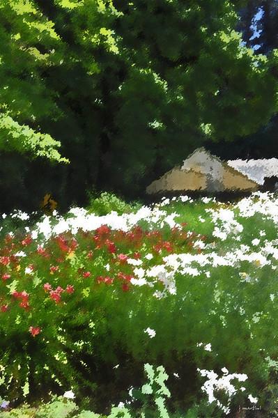 dream gardens 20 2-5-2011.jpg